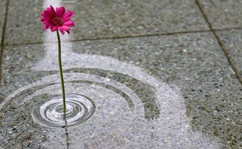 072 ripple vase