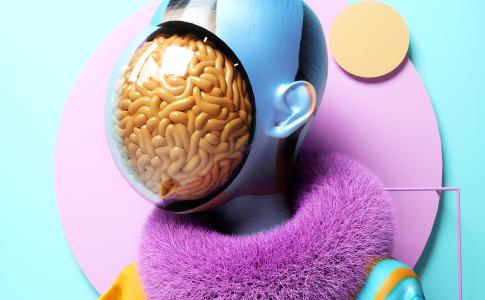 Brein Trein
